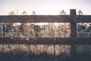Tempe-wooden-ranch-fence